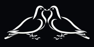 Deux colombe, baiser, beaux sentiments, fond noir illustration stock