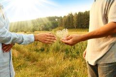 Deux couples de mains d'amour sur la nature Photographie stock