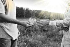 Deux couples de mains d'amour sur la nature Images libres de droits