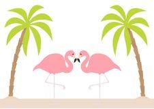 Deux couples roses de flamant se tenant sur une jambe Palmier, île, sable de plage Oiseau tropical exotique Collection d'animal d Photos libres de droits
