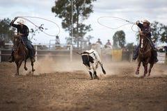 Deux cowboys Roping un veau à un rodéo Photo stock