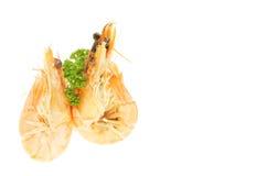 Deux crevettes roses Photographie stock