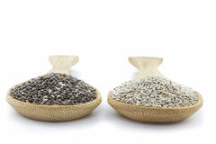 Deux cuillères avec les graines noires et blanches de chia  Images libres de droits