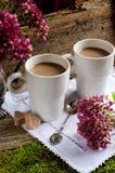 Deux cuvettes de café Images libres de droits