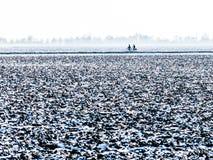 Deux cyclistes dans le polder en hiver, Hollande Image stock