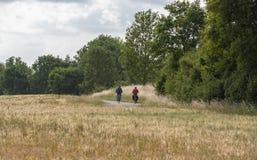 Deux cyclistes par les champs agricoles Images libres de droits