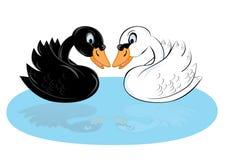 Deux cygnes de dessin animé Photographie stock libre de droits