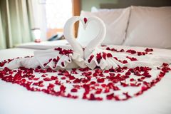 Deux cygnes faits à partir des serviettes embrassent sur le lit de blanc de lune de miel Photos stock