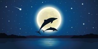 Deux dauphins sautent de l'eau dans le clair de lune illustration stock