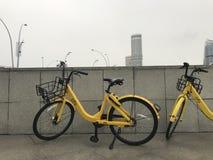 Deux de location par marque de ` d'ofo de ` d'application va à vélo Images stock