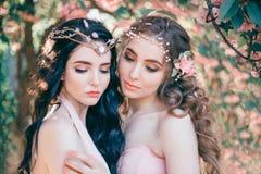 Deux elfes étonnants avec un plan rapproché doux de maquillage de ressort Blonde et brune avec longtemps, cheveux sains et ondule photographie stock