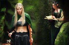 Deux elfes féminins marchant dans les bois Photos stock
