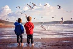 Deux enfants adorables, alimentant les mouettes sur la plage Images stock