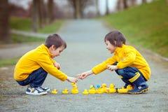 Deux enfants adorables, frères de garçon, jouant en parc avec le caoutchouc Image libre de droits