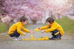 Deux enfants adorables, frères de garçon, jouant en parc avec le caoutchouc Image stock