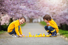 Deux enfants adorables, frères de garçon, jouant en parc avec le caoutchouc Photographie stock libre de droits