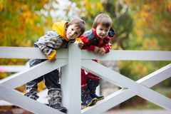 Deux enfants adorables, frères de garçon, jouant en parc sur le DA pluvieux Photos libres de droits