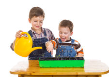 Deux enfants arrosant la jeune plante Photos stock