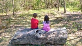 Deux enfants contemplant la vie dans la forêt Photographie stock