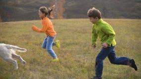 Deux enfants courant avec le golden retriever au champ banque de vidéos