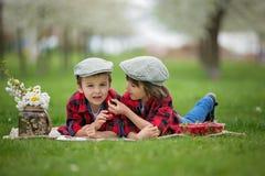 Deux enfants, frères de garçon, lisant un livre et mangeant le strawberri photo libre de droits