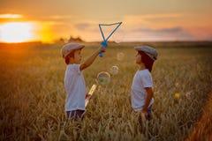 Deux enfants, garçons, chassant des bulles de savon dans un domaine de blé sur le soleil image libre de droits