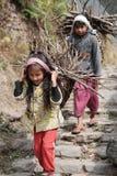 Deux enfants népalais portant le bois de chauffage Images libres de droits