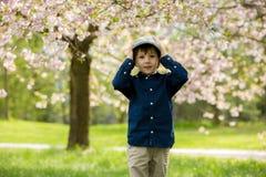 Deux enfants préscolaires adorables, frères de garçon, jouant avec le litt photographie stock