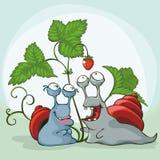 Deux escargots Photos libres de droits