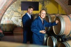 Deux fabricants de vin dans la cave d'établissement vinicole photos stock