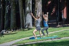 Deux femelles attirantes faisant le yoga en parc images stock