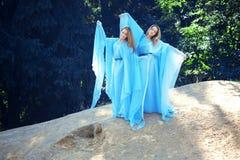 Deux femme, jumelles dans la forêt Photographie stock libre de droits
