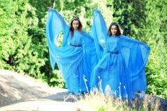 Deux femme, jumelles dans la forêt Image stock
