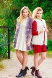 Deux femmes à la mode extérieures photo libre de droits