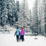 Deux femmes avec le promeneur de bébé appréciant la maternité dans la forêt d'hiver image stock