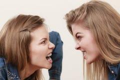 Deux femmes ayant discutent Images stock
