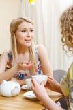 Deux femmes ayant la conversation en café Images libres de droits