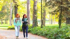 Deux femmes, ayant une promenade dans le parc banque de vidéos