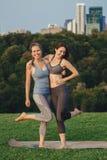 Deux femmes caucasiennes faisant le yoga étirant la séance d'entraînement en parc dehors au coucher du soleil image stock