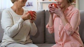 Deux femmes causant et buvant du thé sur le sofa, amitié femelle confiante, appui banque de vidéos