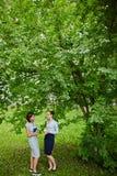 Deux femmes causant sous l'arbre Images libres de droits