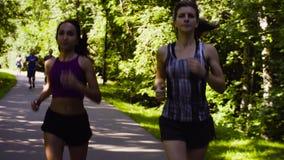 Deux femmes courant en parc au jour d'été banque de vidéos