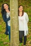 Deux femmes d'amis derrière l'arbre Image libre de droits