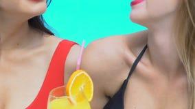 Deux femmes dans le bikini et des lunettes de soleil tenant des cocktails, riant près de la piscine, fin banque de vidéos