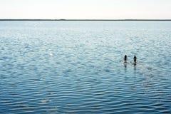 Deux femmes dans le lac avec la réflexion Photos stock