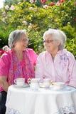 Deux femmes de sourire supérieures ayant le thé dans le jardin Images libres de droits