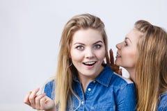 Deux femmes disant des contes, bavardage de rumeurs Image libre de droits