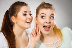 Deux femmes disant le bavardage Photo libre de droits