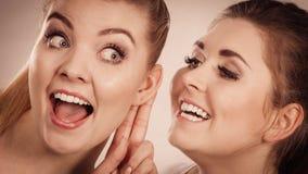Deux femmes disant le bavardage Photo stock