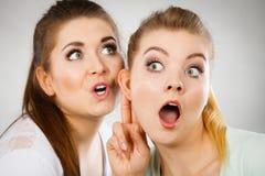 Deux femmes disant le bavardage Photographie stock